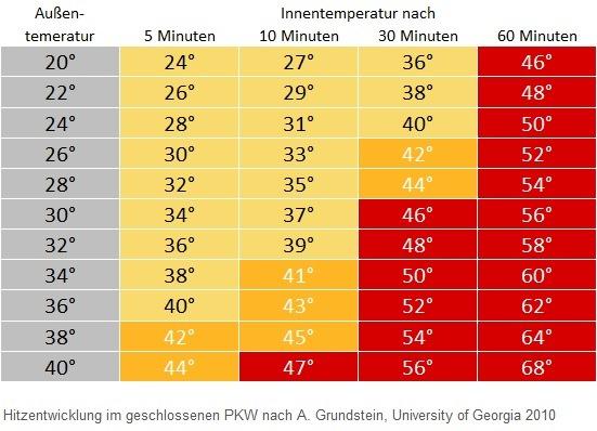 Hund im Auto: Hitzegefahr im Sommer